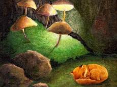 Pilze und Fuchs